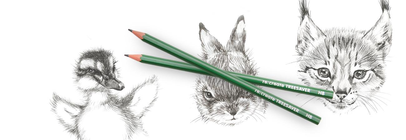 Treesaver HB Pencils